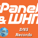 How to use and Manage Advanced DNS Zone Editor in cPanel