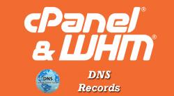 cPanel DNS Records