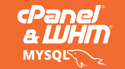 cPanel MySQL