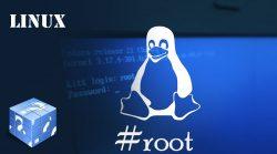 Linux Article