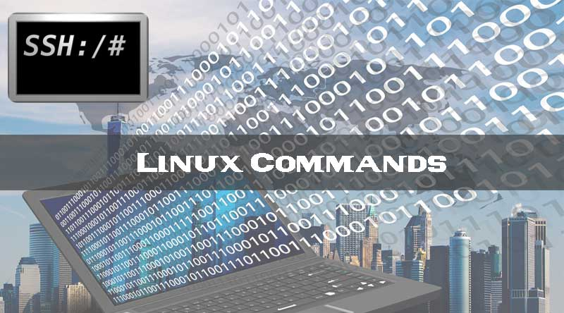 Linux and Unix chmod command tutorial and Examples - XsoftHost