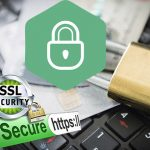 What is a Trust Seal SSL Certificates