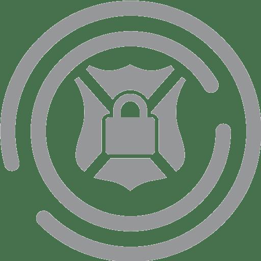 Anti DDoS dedicated server